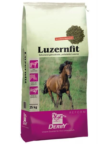 DERBY® Luzernfit