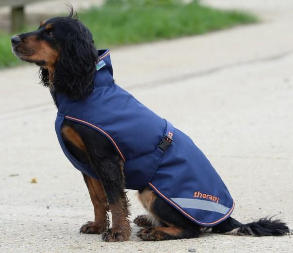 Bucas Therapie Dog Rug
