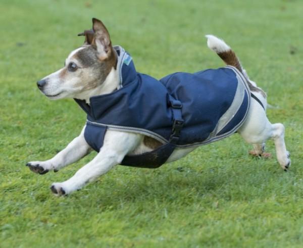 Bucas Freedom Dog Rug Hundedecke